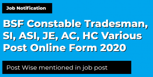 BSF Constable Tradesman, SI, ASI, JE, AC, HC Various Post Online Form 2020